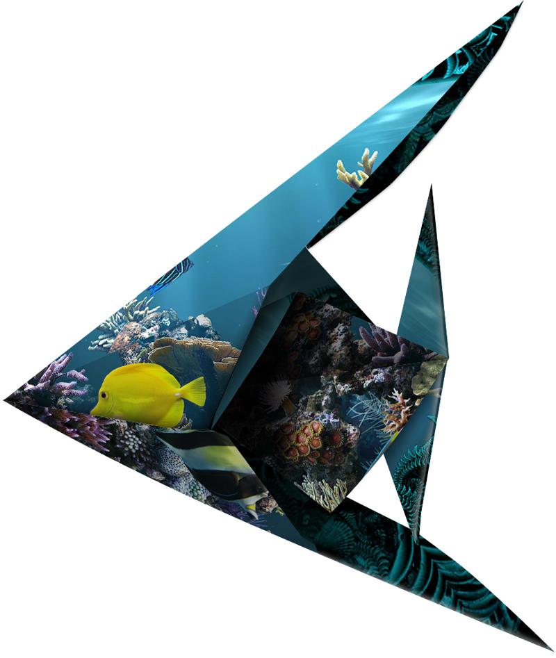 fish_origami
